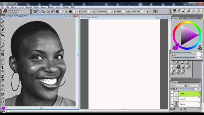 How to Draw a Portrait Using Guidelines with Corel Painter